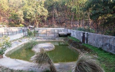 Dehradun zoo deer park